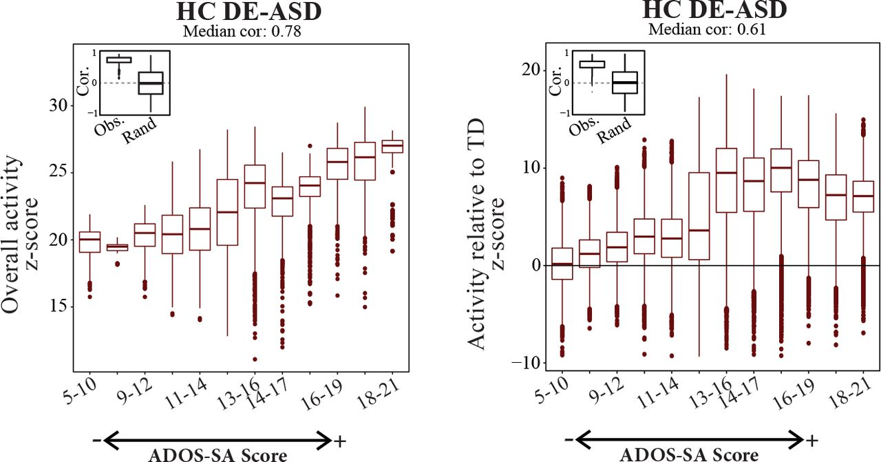 Asd Sa transcriptional organization of autism spectrum disorder and