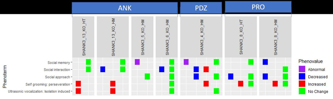A multifaceted approach for analyzing complex phenotypic data in