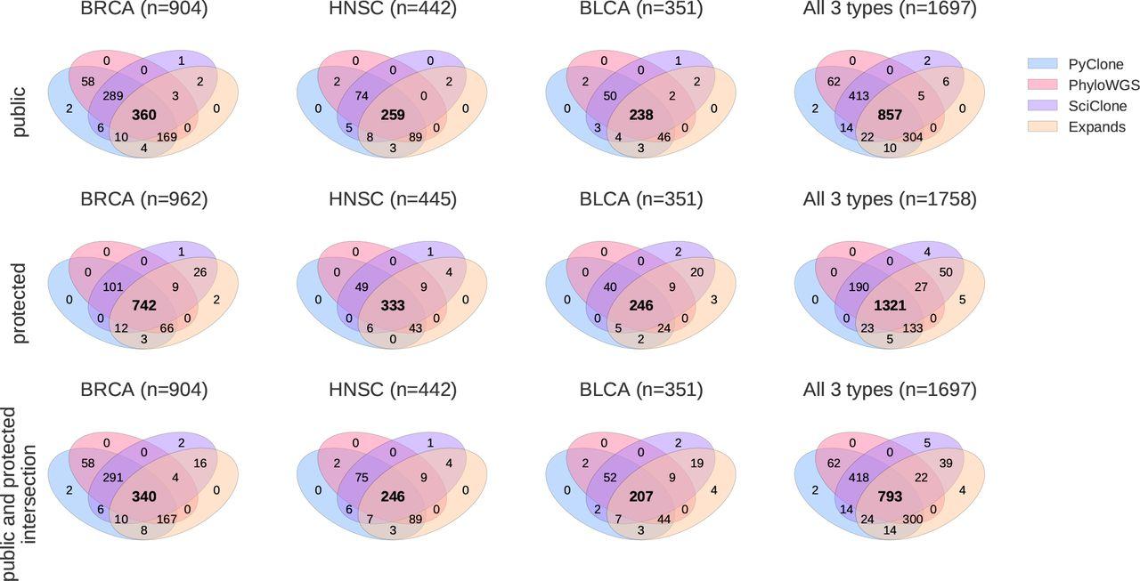 Assessing reliability of intra-tumor heterogeneity estimates from