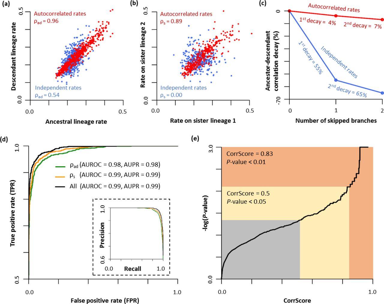 A new method for detecting autocorrelation of evolutionary