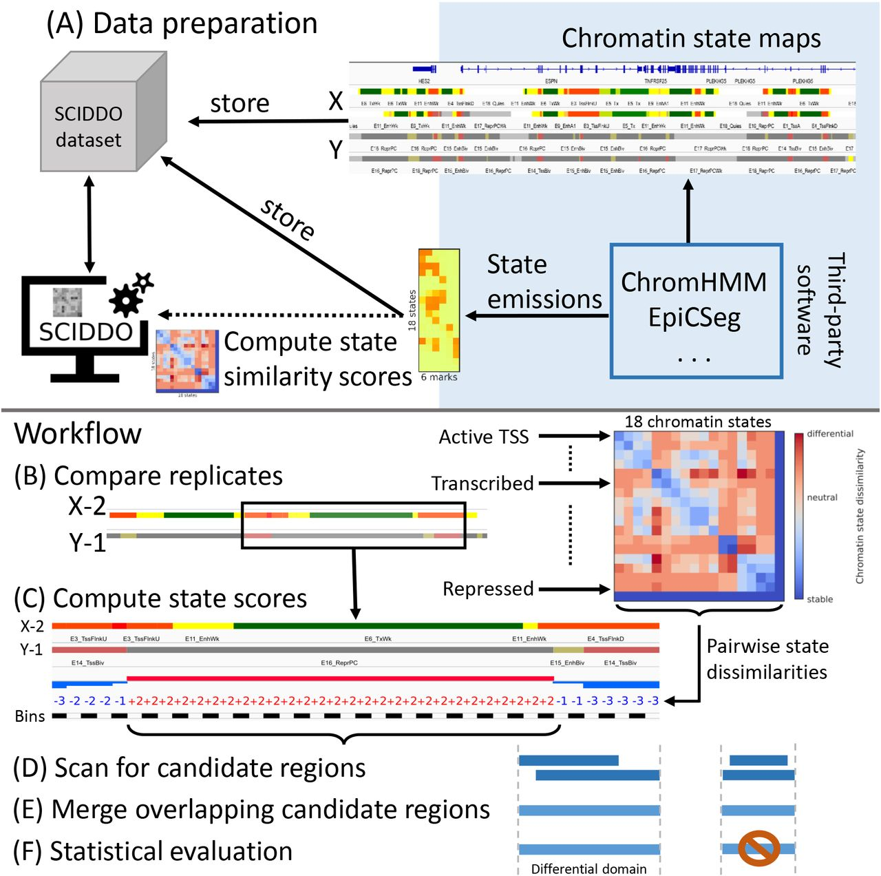 Fast Detection of Differential Chromatin Domains with SCIDDO
