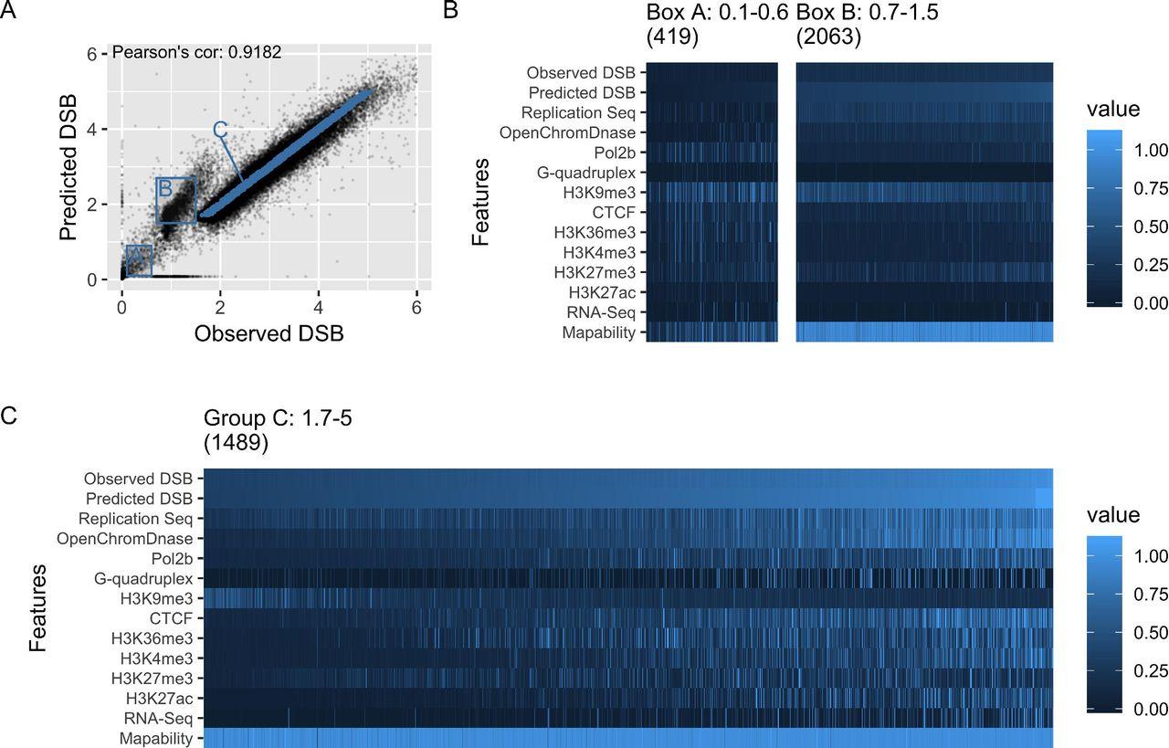 Modelling double strand break susceptibility to interrogate