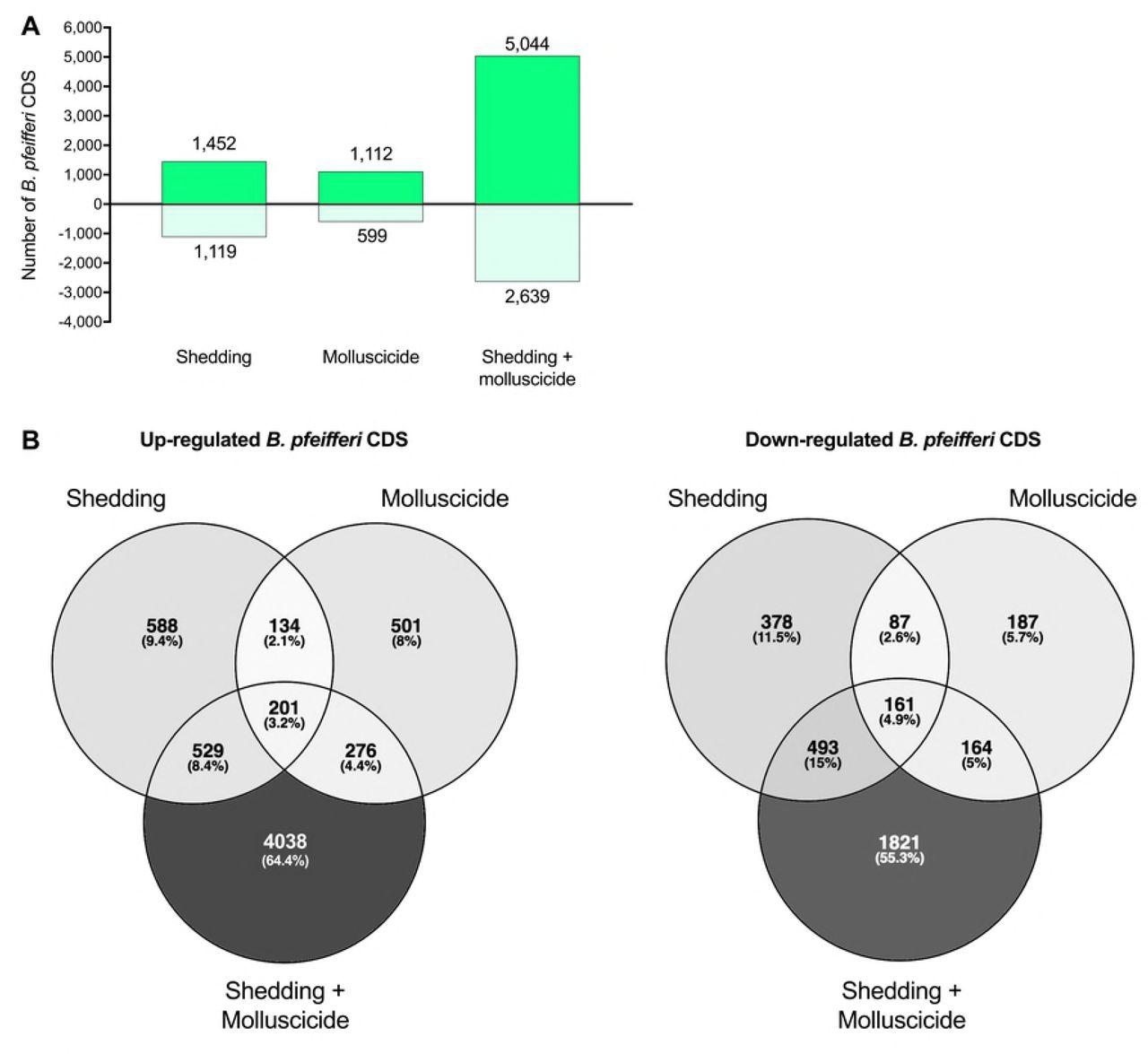 Transcriptional responses of Biomphalaria pfeifferi and