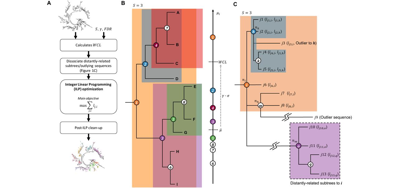 Phylogenetic Clustering by Linear Integer Programming