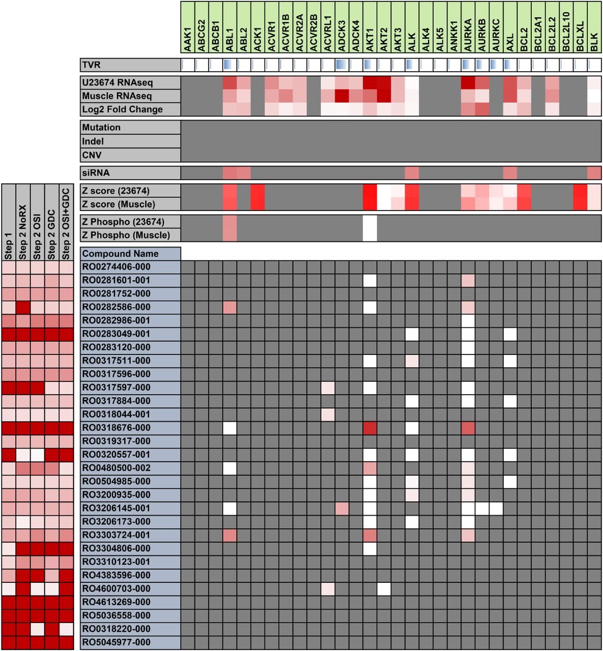 Probabilistic modeling of personalized drug combinations