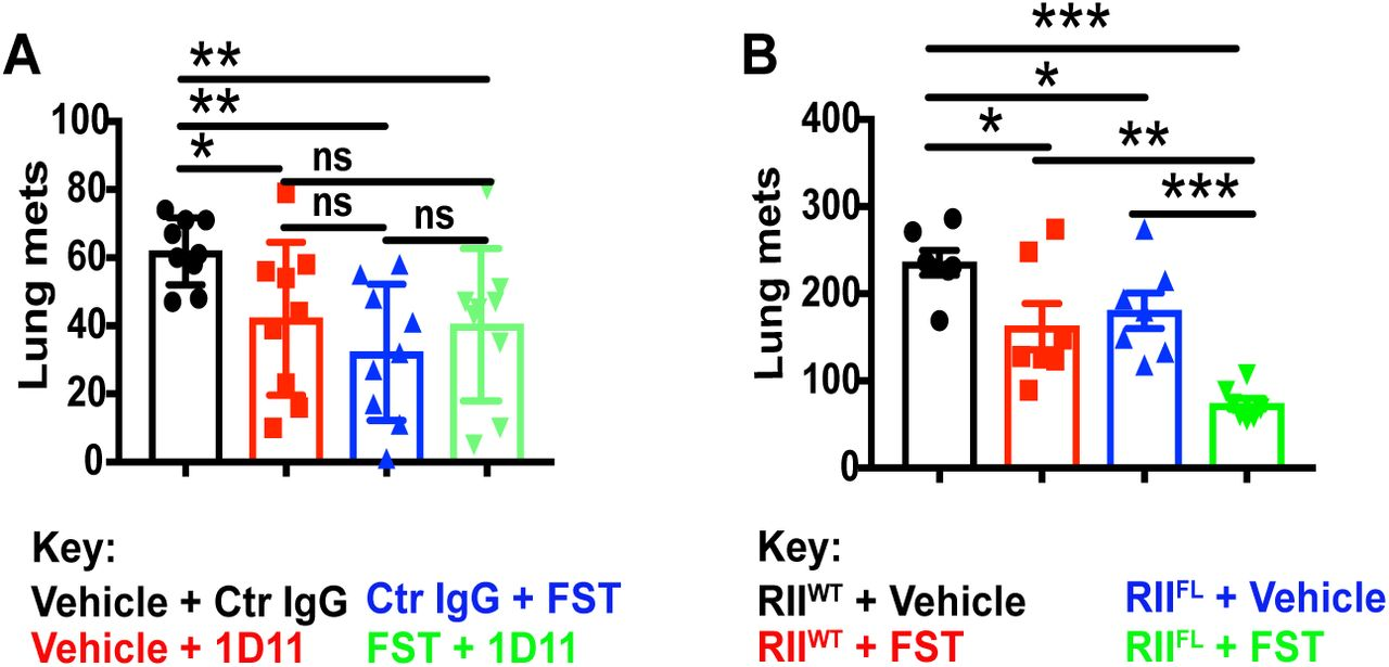 Therapeutic blockade of Activin-A improves NK cell function