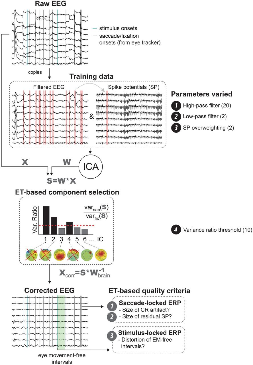 Optimized ICA-based removal of ocular EEG artifacts from