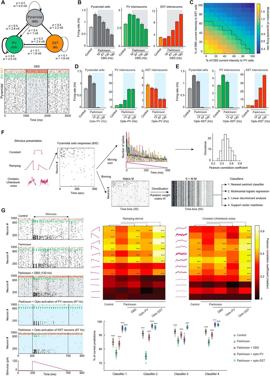Opto-activation of cortical somatostatin interneurons alleviates