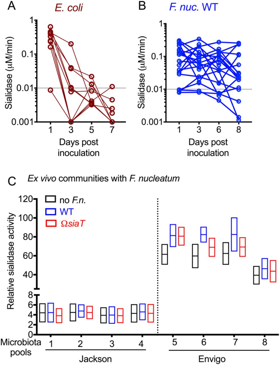 Vaginal sialidase activity in E. coli and F. nucleatum inoculated mice, and in vaginal microbiota pools of Jackson and Envigo mice, related to Figure 6 (A-B) Sialidase activity in vaginal washes from individual animals purchased from Envigo, estrogenized, and inoculated with E. coli , or F. nucleatum from 1 to 8 dpi. (C) Sialidase activity (after estrogenization) in vaginal wash pooled specimens (1 microbiota pool = 1 cage = 5 mice) from Jackson and Envigo mice, cultured with or without F. nucleatum (WT or ΩsiaT ). No sialidase activity was observed in cultured vaginal microbial communities from Jackson mice, both with and without F. nucleatum . Data shown here is combined from 2 independent experiments.