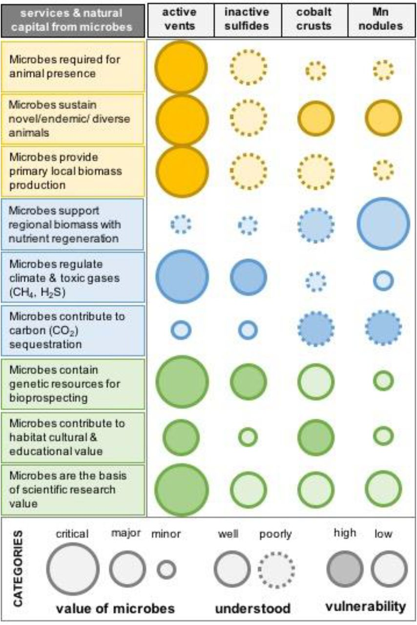 Impacts of Deep-Sea Mining on Microbial Ecosystem Services | bioRxiv
