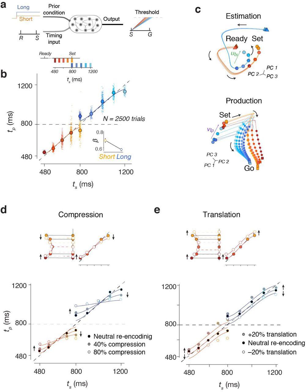 Bayesian computation through cortical latent dynamics | bioRxiv