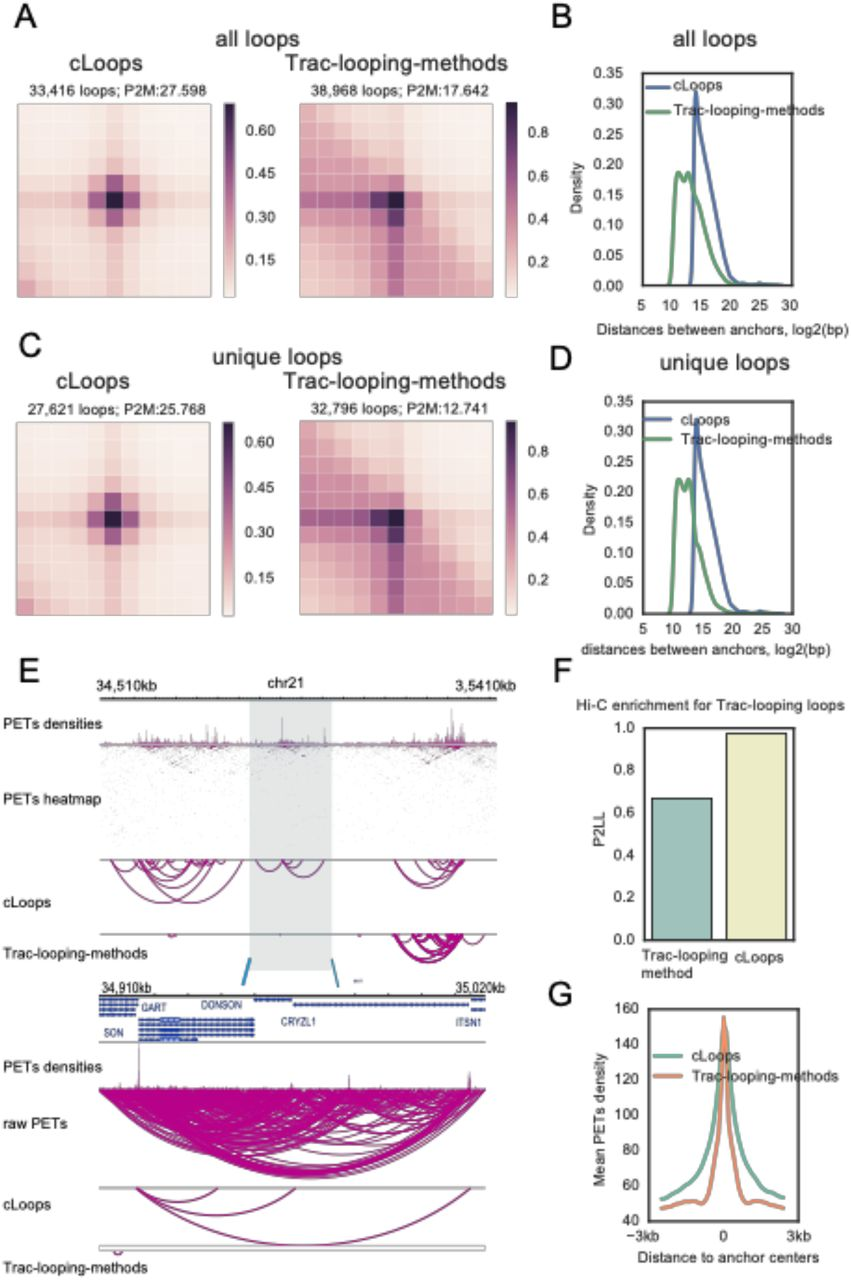 Accurate loop calling for 3D genomic data with cLoops | bioRxiv