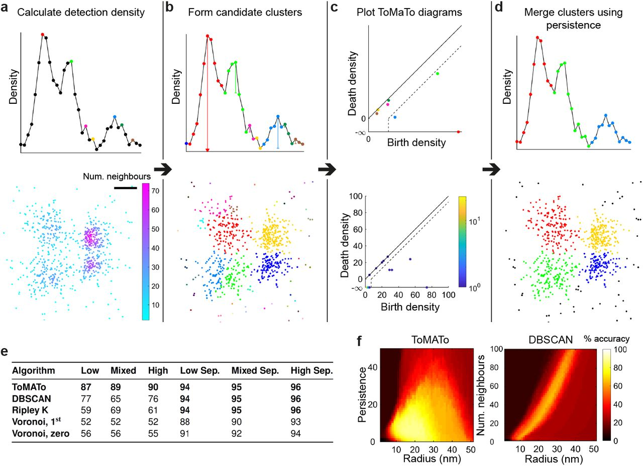 Topological data analysis quantifies biological nano