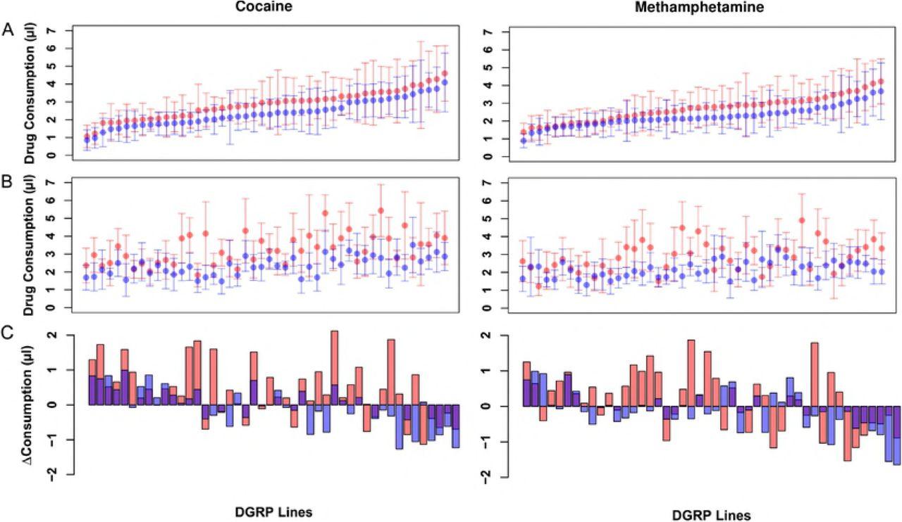 Genetics of Cocaine and Methamphetamine Consumption and