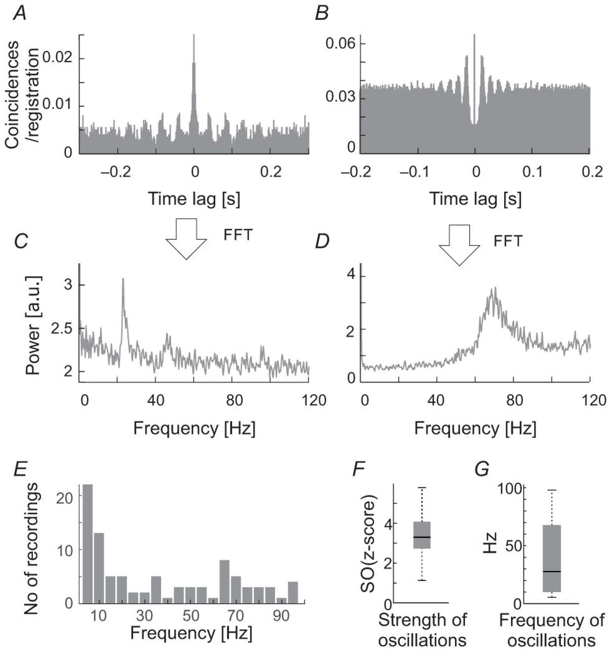 Oscillations in spontaneous and visually evoked neuronal