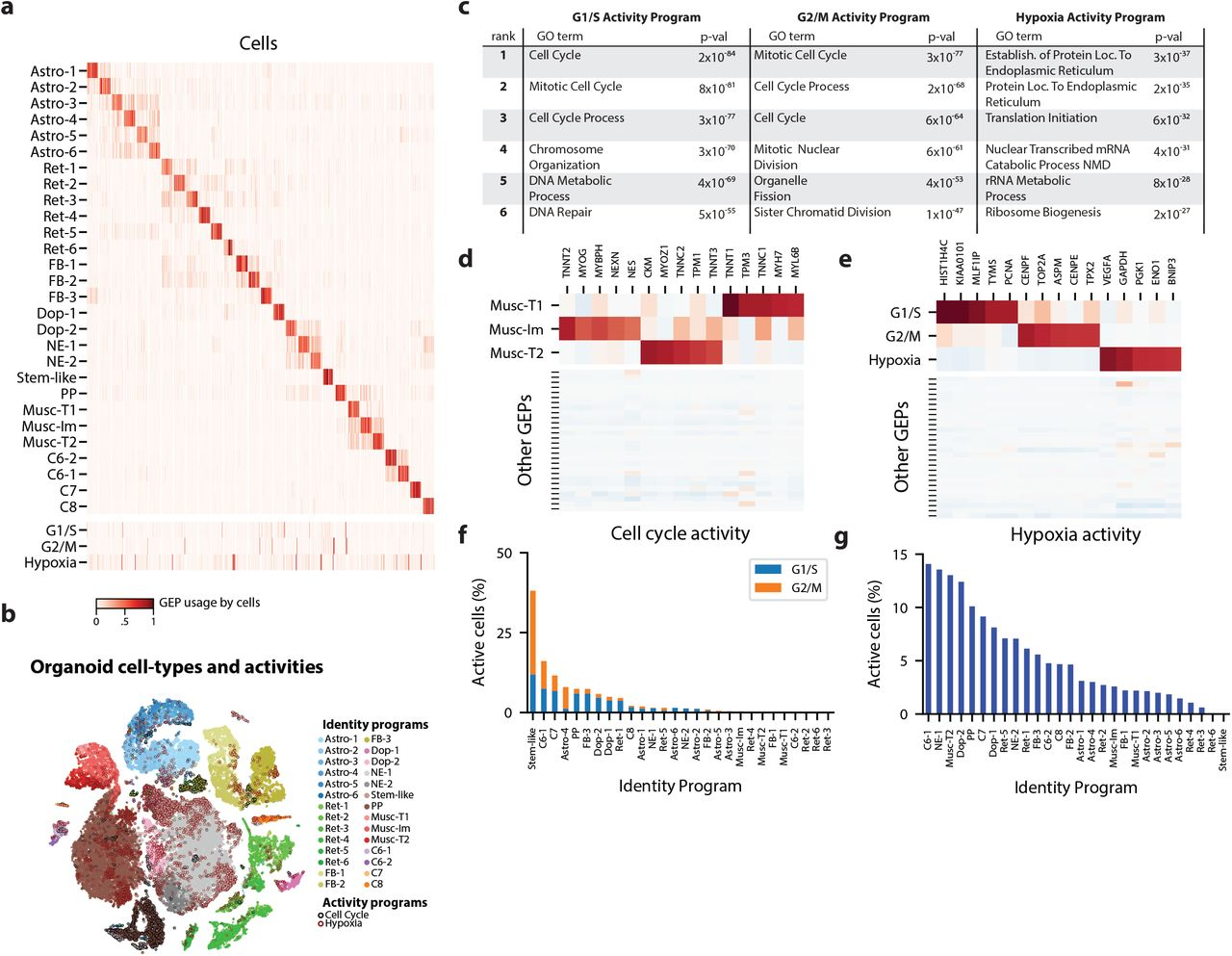 Identifying Gene Expression Programs of Cell-type Identity and