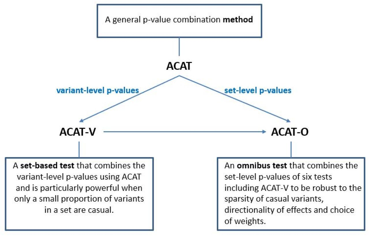 ACAT: A Fast and Powerful P-value Combination Method for