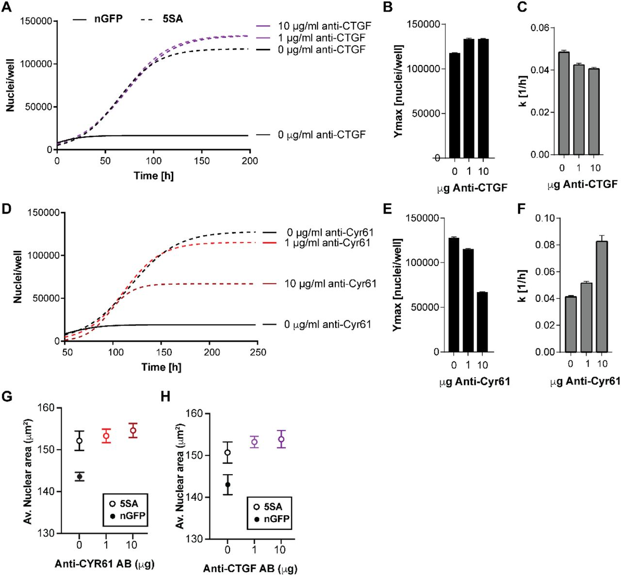 YAP independently regulates cell size and population growth