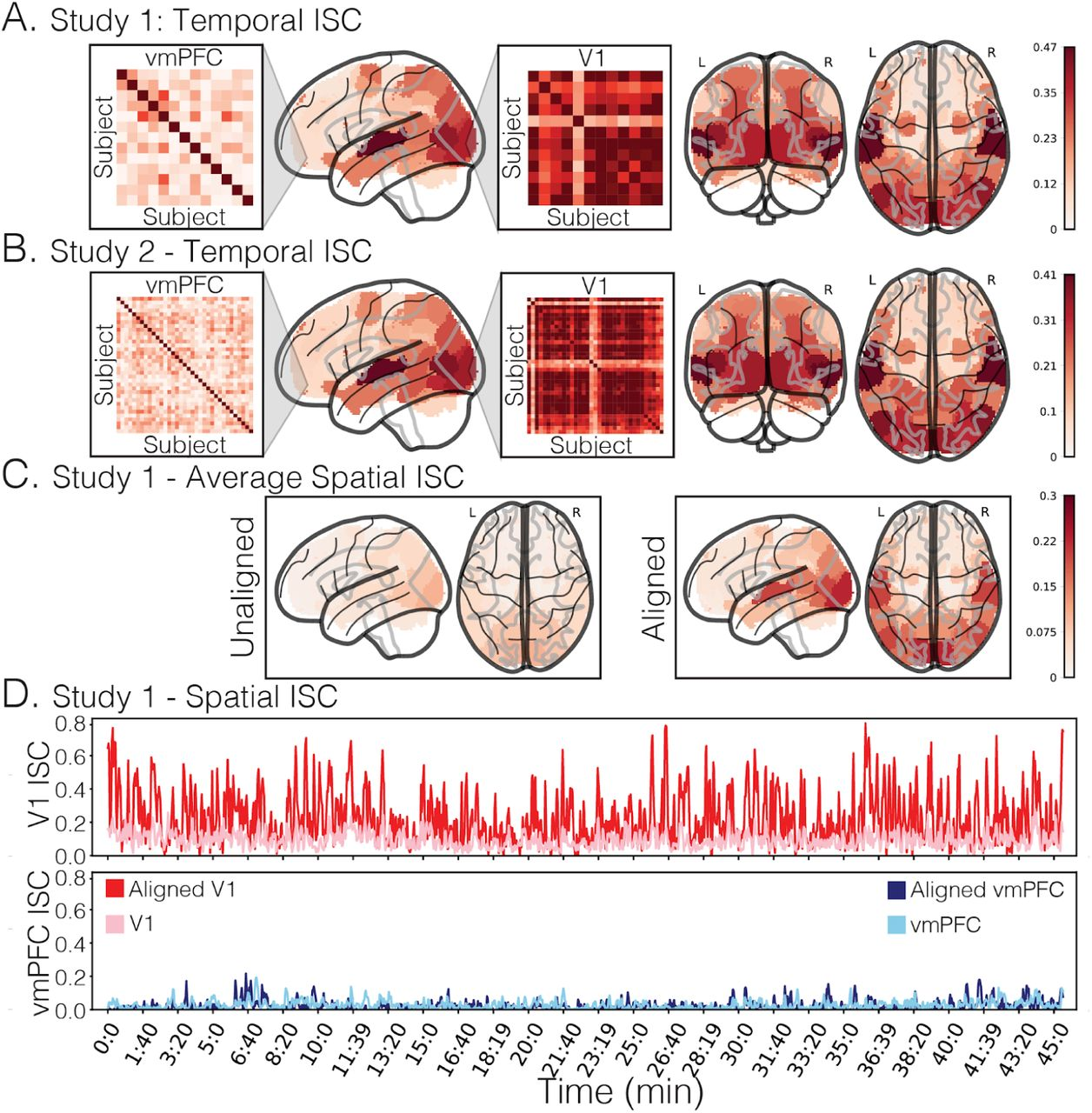Endogenous variation in ventromedial prefrontal cortex state