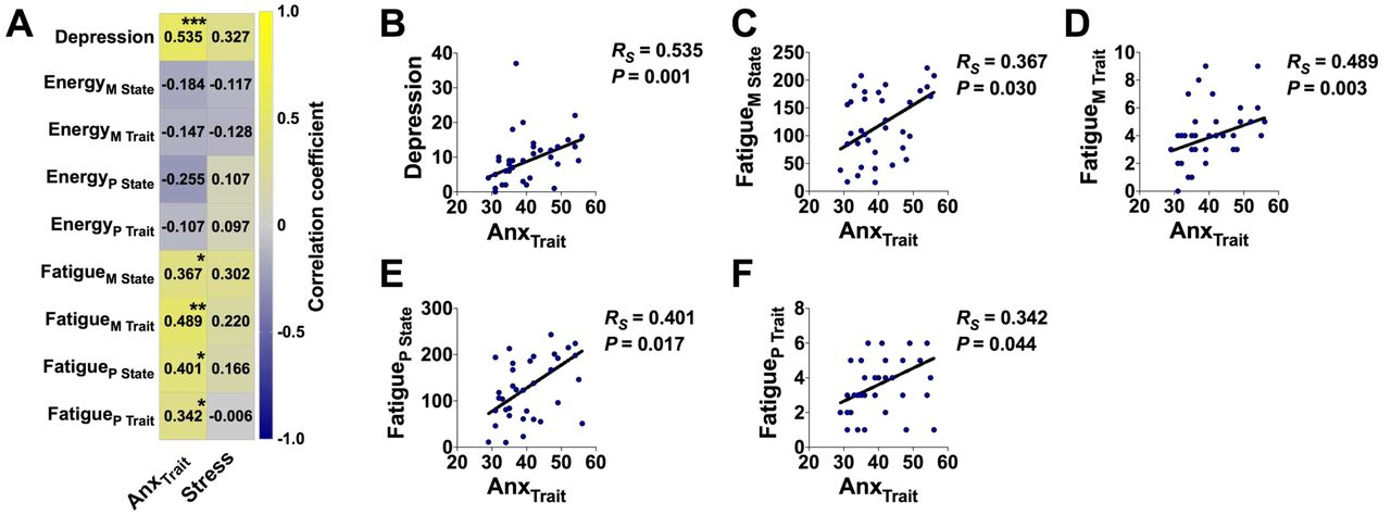 Nucleus accumbens neurochemistry in human anxiety: A 7 T 1H
