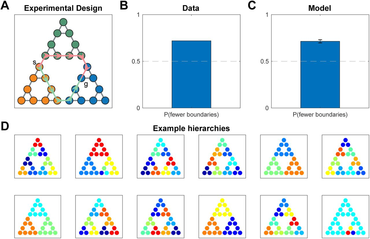 Discovery of Hierarchical Representations for Efficient