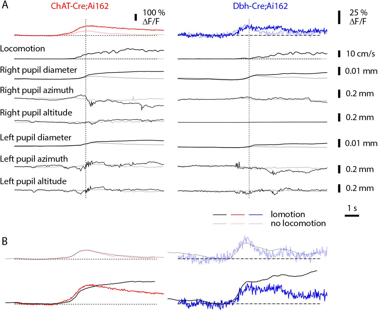 Activation of neuromodulatory axon projections in primary visual