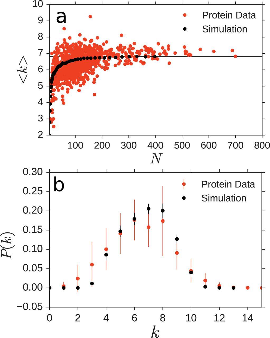 Geometric constraints in protein folding   bioRxiv