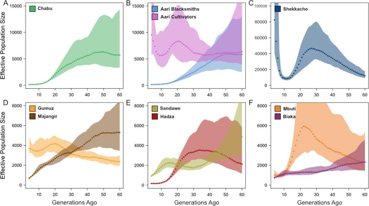 Hunter-gatherer genomes reveal diverse demographic trajectories