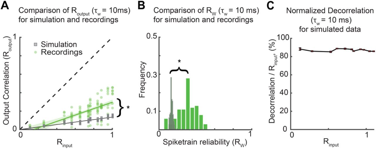 Pattern separation of spiketrains in hippocampal neurons | bioRxiv