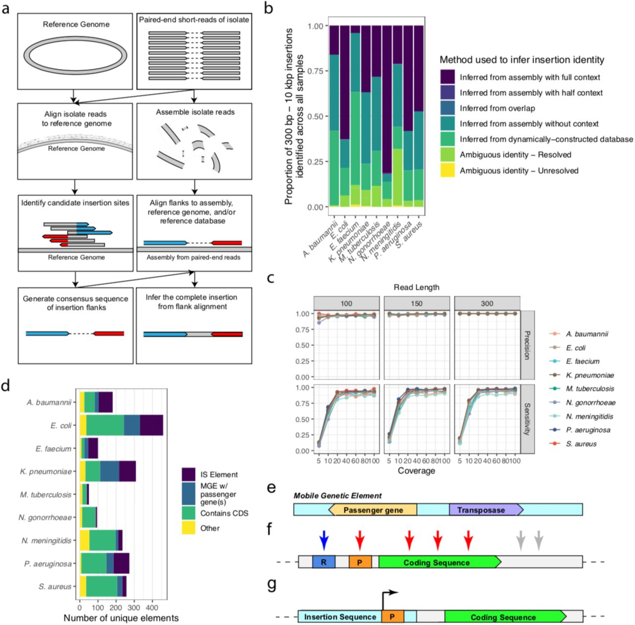 """A new approach to identify MGEs from short-read sequencing data. a , A schematic representation of the workflow implemented in this study. The analysis requires a reference genome of a given species and short-read sequencing FASTQ files as input. The reads are aligned to the provided reference genome and assembled using third-party software. Candidate MGE insertion sites are identified from the alignment to the reference using our own software suite, called mustache . This approach identifies sites where oppositely-oriented clipped read ends are found within 20 bases of each other. Consensus sequences of these flanking ends are then identified, with the assumption being that they represent the flanks of the inserted element. The intervening sequence between the candidate flanks is inferred by aligning flanks to the assembled genome, a reference genome, and our dynamically constructed reference database of all identified MGEs. b , The inference method used to characterize the inserted elements of the downloaded data. """"Inferred from assembly with full context"""" indicates that the sequence was found in the expected sequence context within the assembly and is considered one of the highest-confidence inferred sequences. """"Inferred from assembly with half context"""" indicates that the sequence was found in the expected sequence context on one end of the inserted element, and the other element was truncated at the end of a partially assembled contig. """"Inferred from overlap"""" indicates that the sequence was recovered simply by finding an overlap of two paired flanks. Very few elements are recovered by this method, as we are limiting our analysis to only elements greater than 300 base pairs in length. """"Inferred from assembly without context"""" indicates that the sequence identified was recovered from the assembly, but not within the expected sequence context, presumably due to assembly errors. """"Inferred from dynamically-constructed database"""" refers to elements that were not recover"""