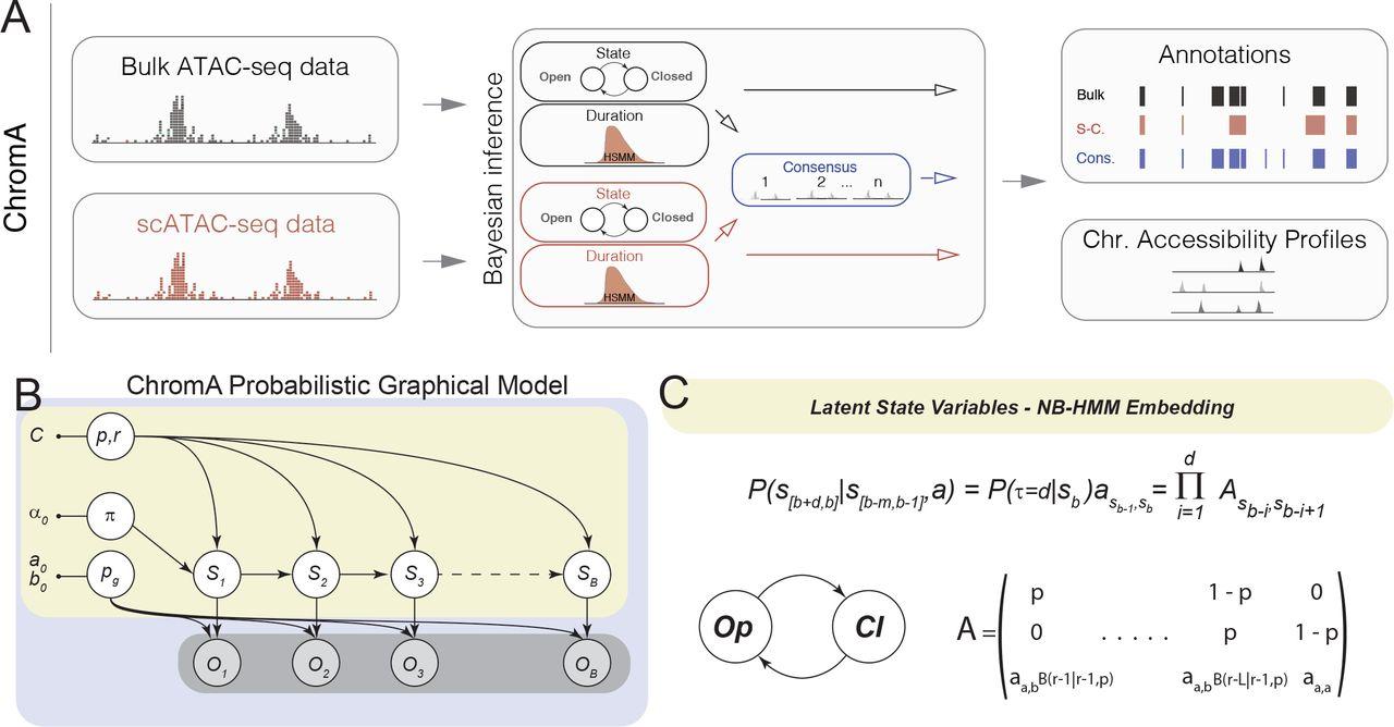 Characterizing the epigenetic landscape of cellular