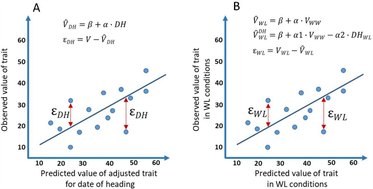 Genomic architecture of phenotypic plasticity of complex traits in