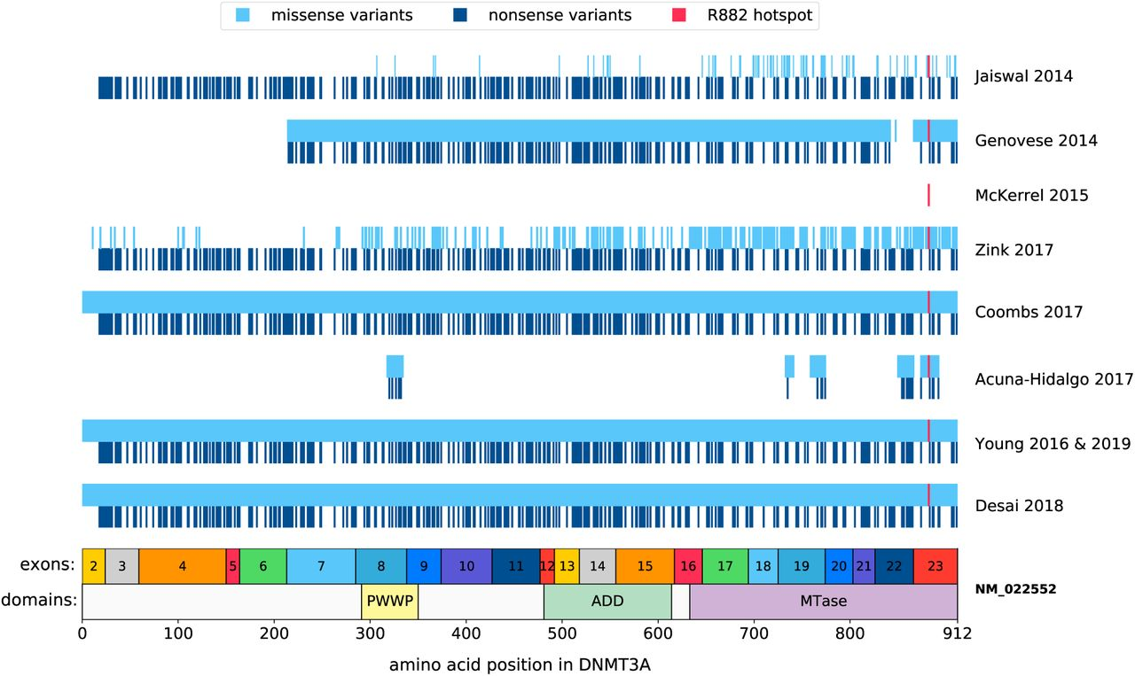 The evolutionary dynamics and fitness landscape of clonal