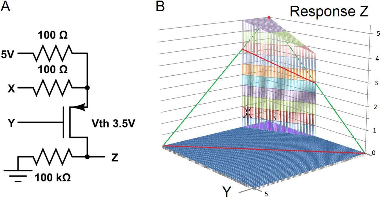 260f275321b6 Explicit Neural Models for Flip-Flops and Oscillators Generate ...