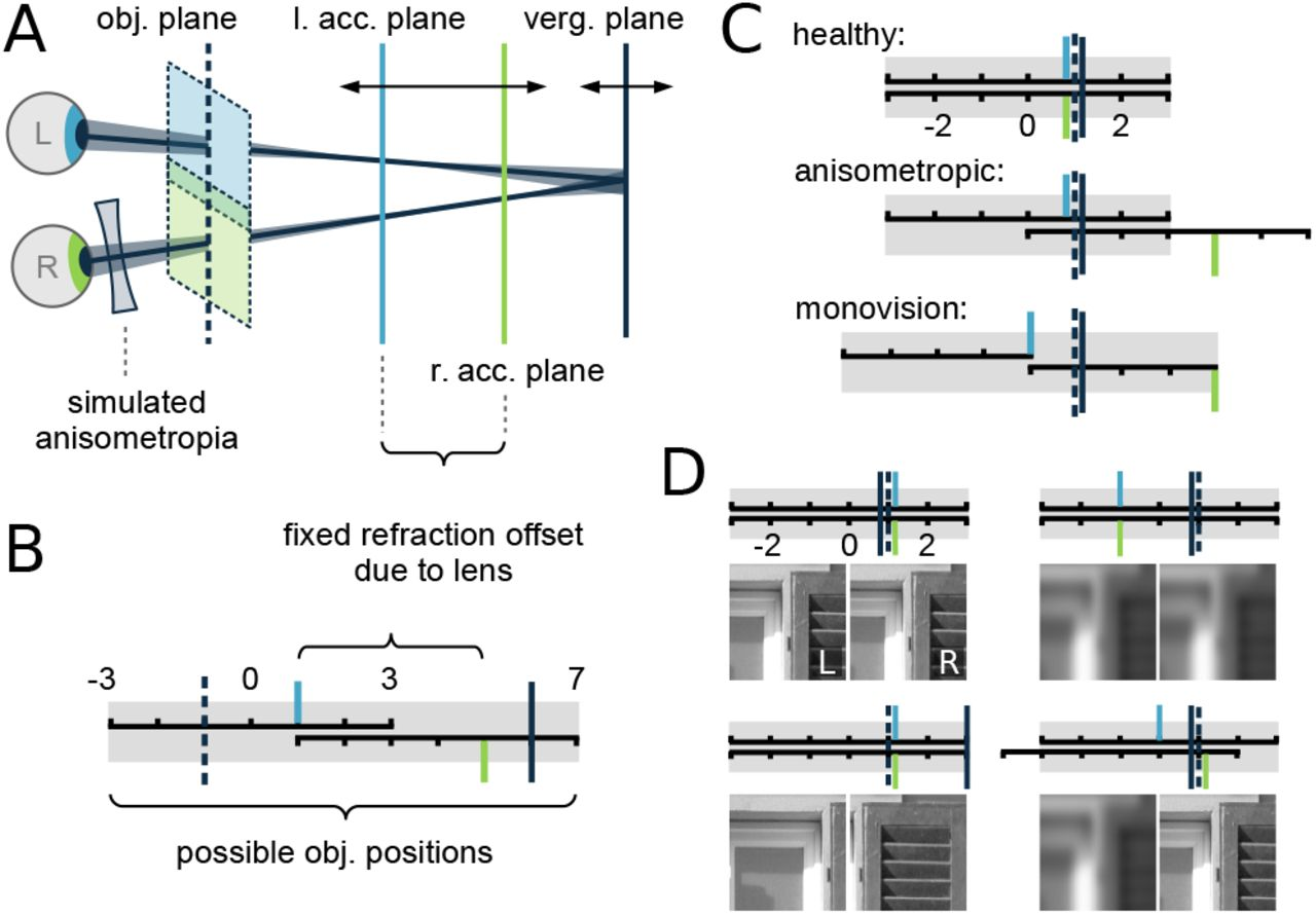 Active Efficient Coding Explains the Development of Binocular Vision