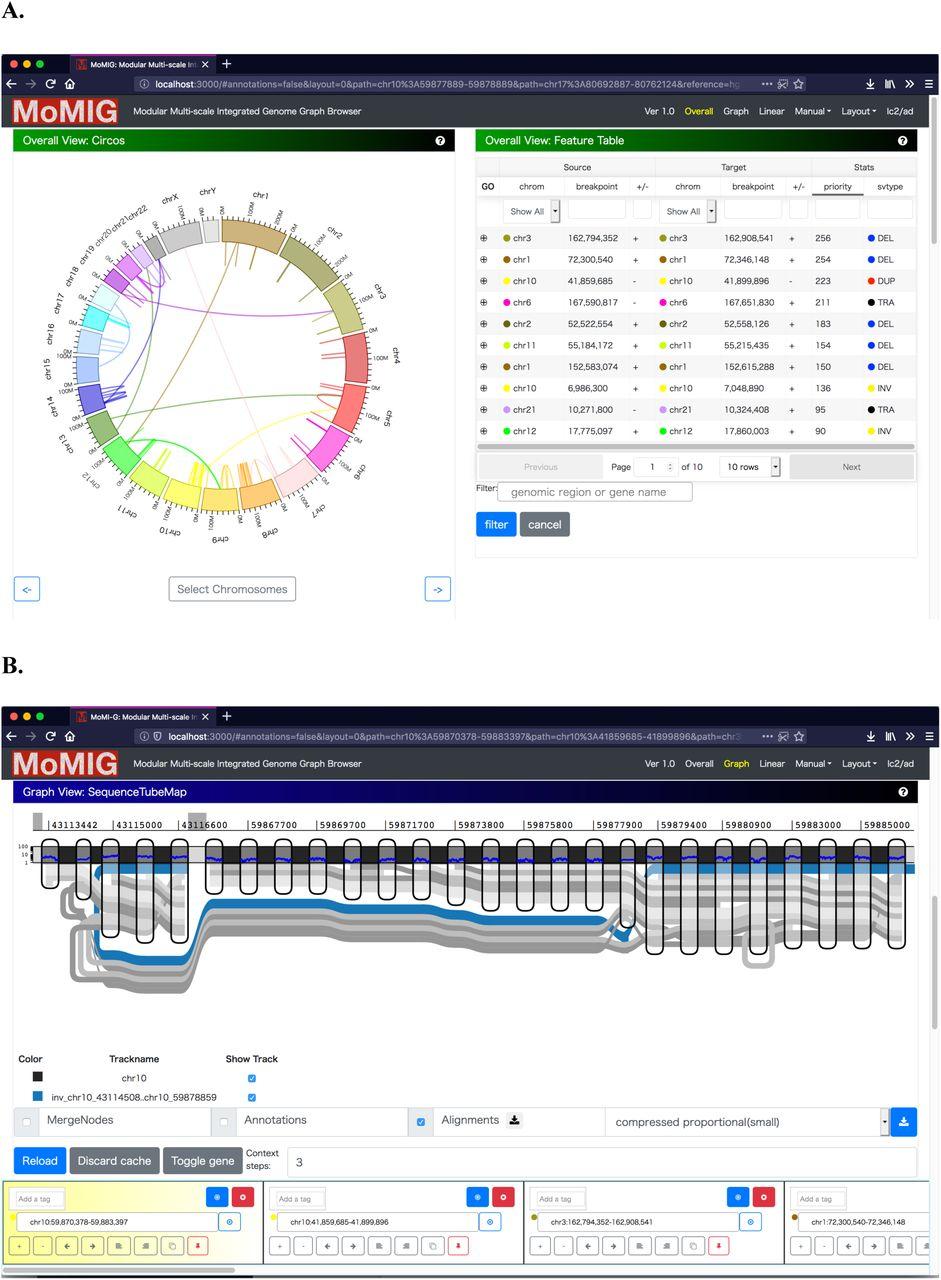 MoMI-G: Modular Multi-scale Integrated Genome Graph Browser