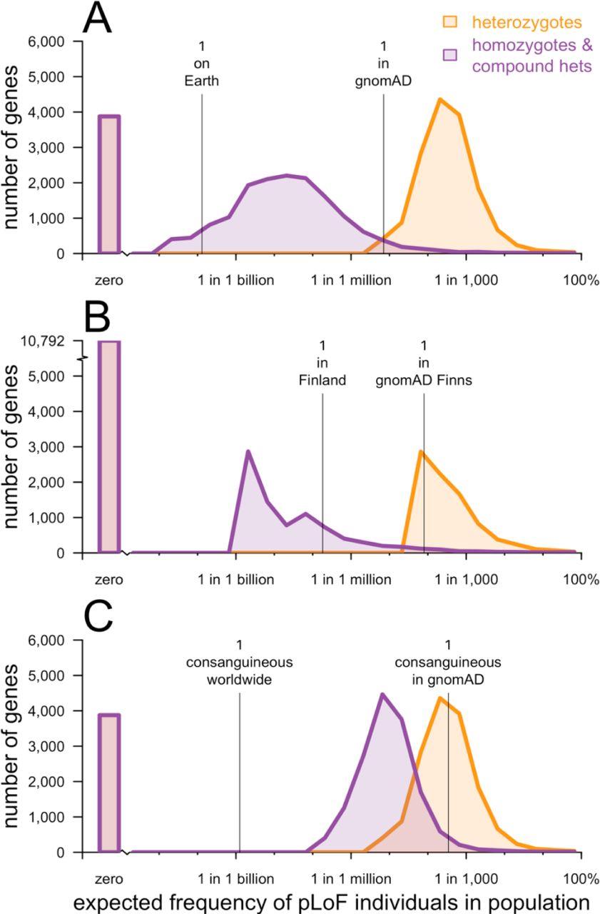 Evaluating Potential Tar S Through Human Loss Of