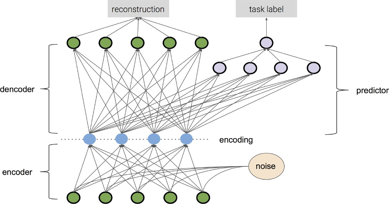 Deep learning of representations for transcriptomics-based phenotype