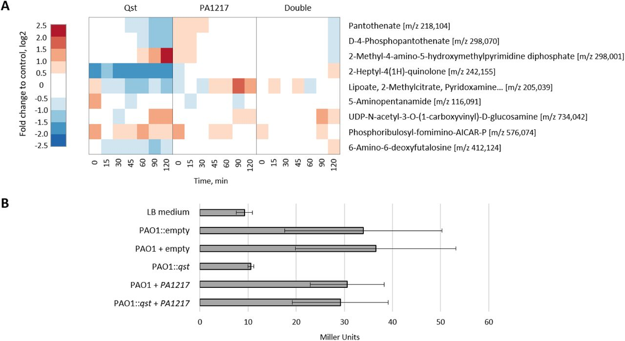 Host metabolic reprogramming of Pseudomonas aeruginosa by