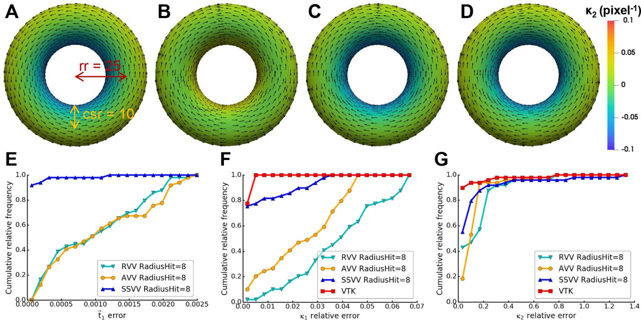 Estimation of Membrane Curvature for Cryo-Electron