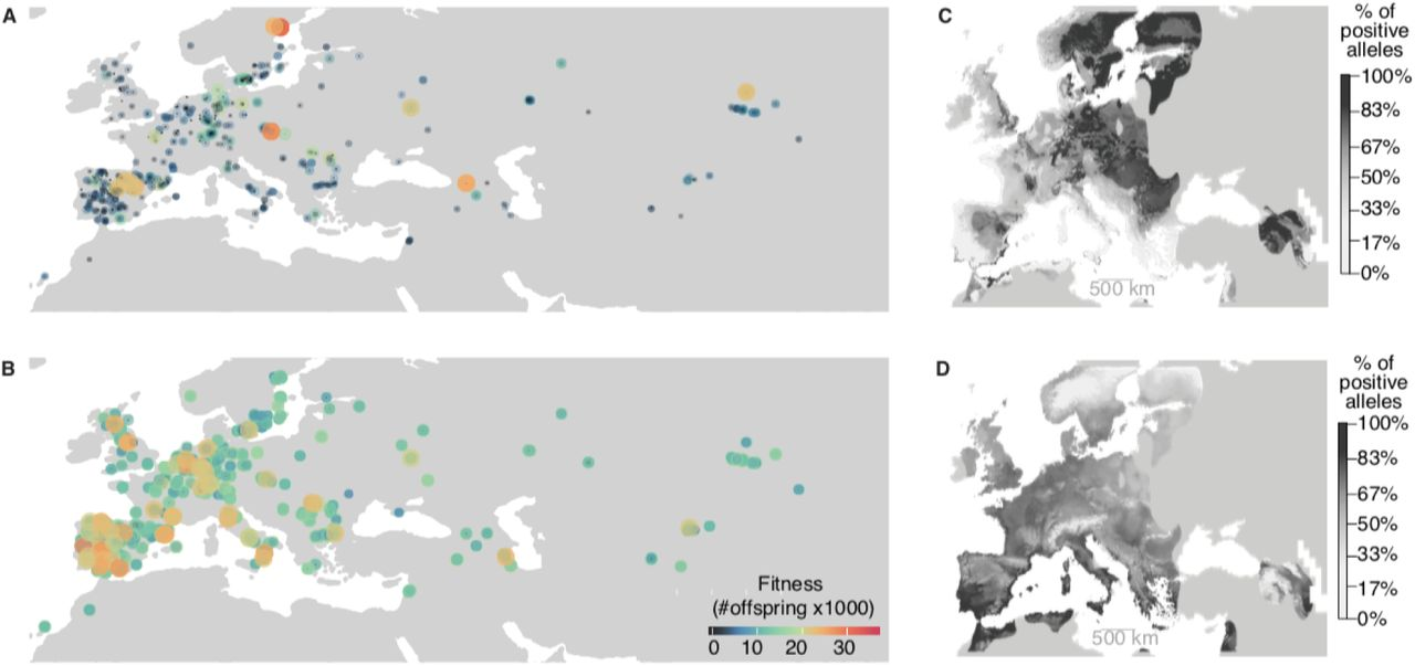 A map of climate change-driven natural selection in Arabidopsis