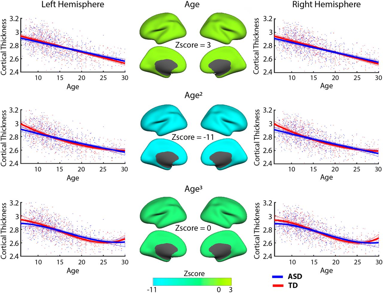 Atypical developmental features of cortical thickness
