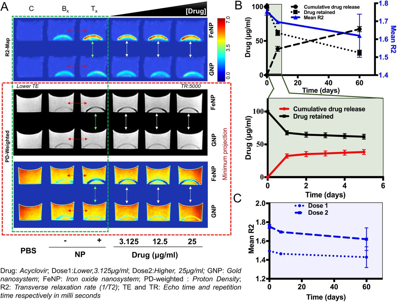 Rational nanotoolbox with theranostic potential for