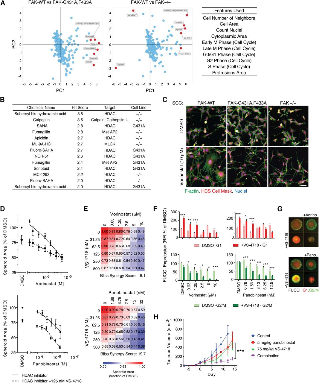 A Synergistic Anti-Cancer FAK and HDAC Inhibitor Combination