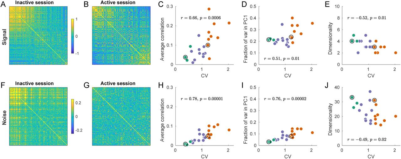 State-dependent geometry of population activity in rat auditory