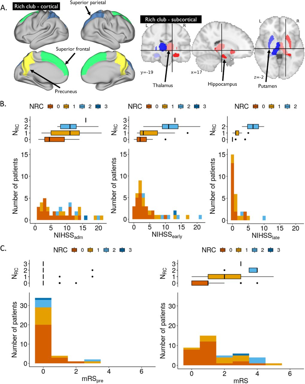 Brain connectivity measures improve modeling of functional