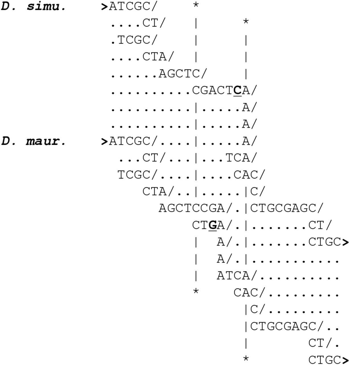 An axiomatic basis for maximal homology alignment | bioRxiv