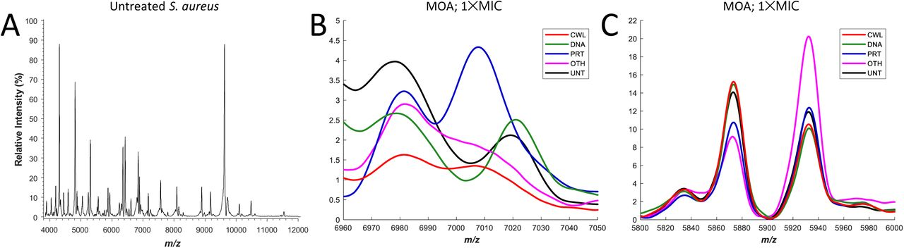 PhenoMS-ML: Phenotypic Screening by Mass Spectrometry and