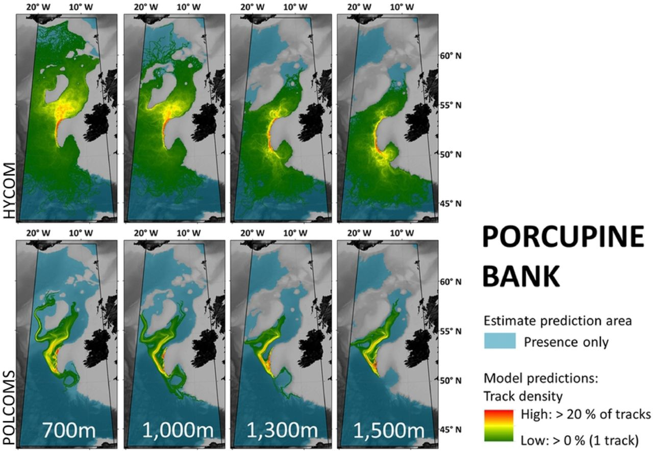 Modelling marine larval dispersal: a cautionary deep-sea tale for