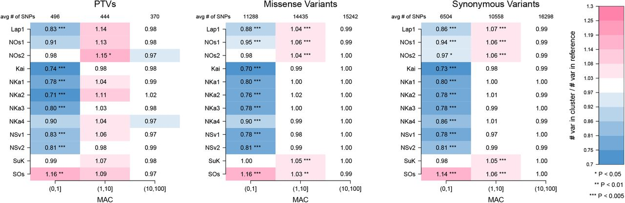 Exome sequencing identifies high-impact trait-associated